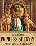 img - for Princess of Egypt - A Mystery in Ancient Egypt (The Mummifier's Daughter Series Book 2) book / textbook / text book