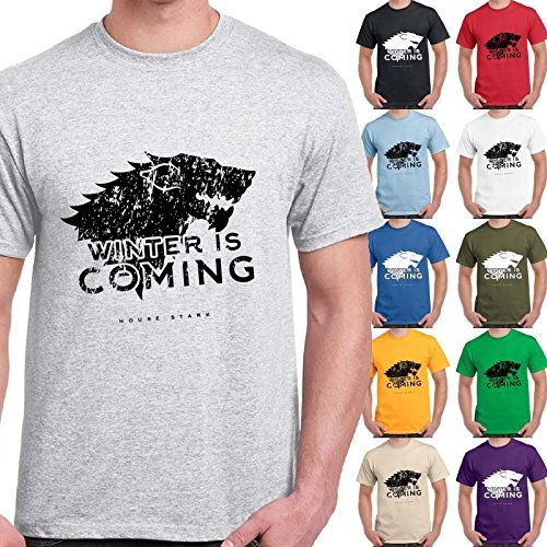 CHEMAGLIETTE! - T-Shirt Game Of Thrones House Stark Winter Is Coming Trono Di Spade Maglietta, Colore: Cenere, Taglia: L