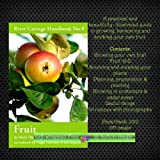 Mark Diacono River Cottage Handbook No. 9 Fruit Guide to growing harvesting & cooking your own fruit * Contents: * Fruit A-Z * Sourcing & creating your plants * Planning preparation & planting * Growing in containers * 30 Recipes (Paperback, 2012)