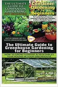 The Ultimate Guide To Companion Gardening For Beginners Container Gardening For Beginners