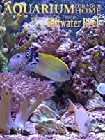 Aquarium for your Home - Saltwater Reef an Aquarium for your Television [HD]