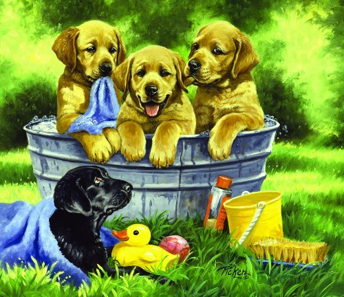 Cheap SunsOut Squeaky Clean 200pc Childrens Jigsaw Puzzle by Linda Picken (B004HSAO2U)