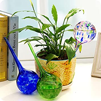 Amazon.com : Mkono 3pcs Plant Automatic Glass Self Watering Aqua ...