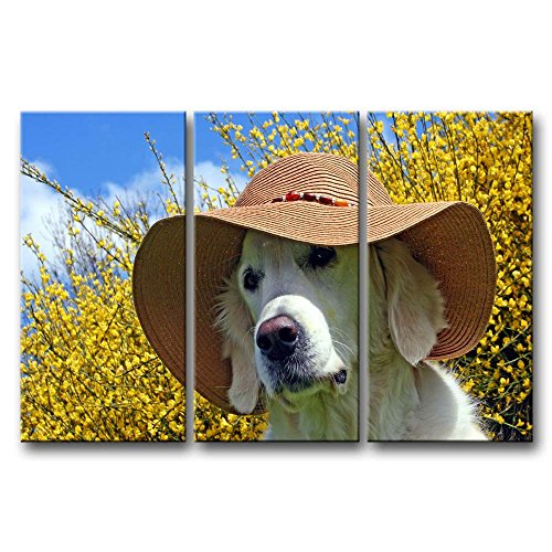 3 Panel Wall Art Painting Golden Retriever With A Summer Hat Pictures Prints On Canvas Animal The Picture Decor Oil For Home Modern Decoration Print For Girls Bedroom