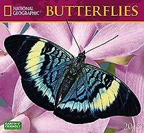 Butterflies 2015