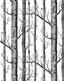 HaokHome® Modern Birch Tree Wallpaper Non Woven Forest Trunk Wall Paper Black&White - 57square Feets/roll