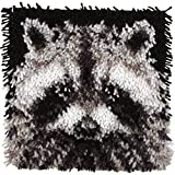 Wonderart Latch Hook Kit 12X12 Raccoon