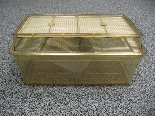 Large Allentown Static Rodent Cage Complete With Wire Bar, Lid - Import It  All