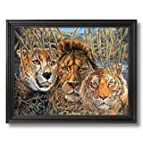 African Phases Cat Lion Tiger Animal Wildlife Home Decor Wall Picture Black Framed Art Print