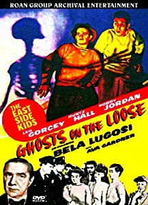 Ghosts on the Loose - DVD [Import]