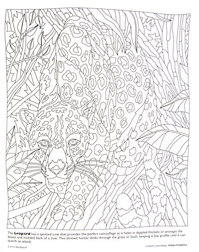 Hidden Animals Coloring Pages : Coloring pages camouflage animals hidden predators