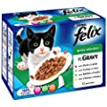 Felix Pouch Meat Selection in Gravy 12 x 100 g (Pack of 4, Total 48 Pouches)