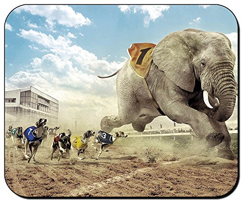 carrera-de-perros-y-elefante-dogs-elephant-races-mauspad-mousepad-pc