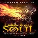 Burned by the Soul: Struck from the Heavens Book 1 Audiobook by William Stadler Narrated by Tye Morris