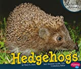 Hedgehogs (Nocturnal Animals)