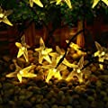 lederTEK Starfish Solar Powered Christmas Lights Warm White 30 LED 20ft 8 Modes Novelty Fairy String Light for Garden, Lawn, Patio, Xmas Tree, Home, Holiday Decorations, Indoor, Outdoor, Bedroom
