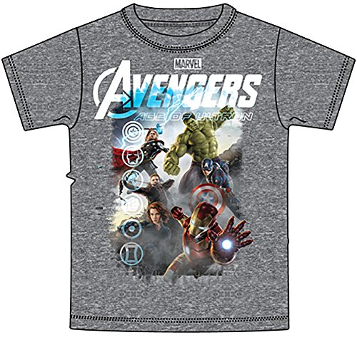 Marvel Avengers Iron Man Thor Hulk & Captain America Boys T Shirt - Grey
