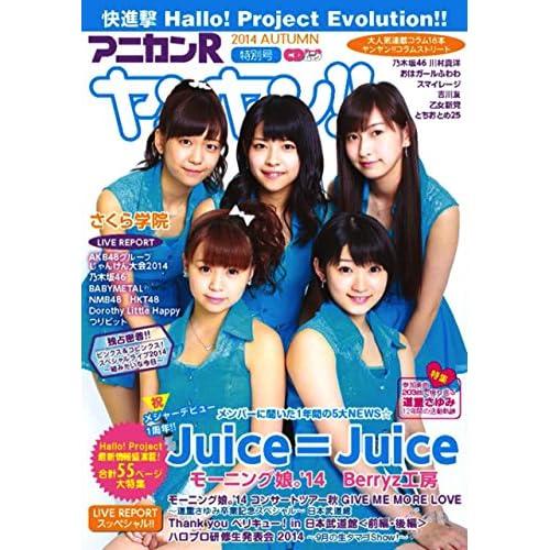 アニカンRヤンヤン!! 特別号 2014 AUTUMN (CDジャーナルムック)