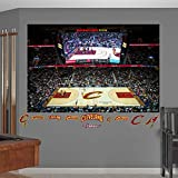 "NBA Cleveland Cavaliers Quicken Loans Arena Mural Fathead Real Big Decals, 72""W x 48""H"