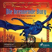 Die brennende Burg (Die Ritter der Elfenkönigin 3) (       ungekürzt) von Peter Gotthardt Gesprochen von: Giannina Spinty