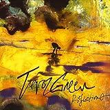Songtexte von Trevor Green - Reflections