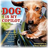 img - for Dog is My Copilot 2016 Wall Calendar book / textbook / text book