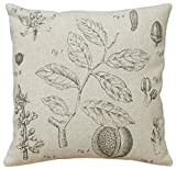 123 Creations All Natural Linen Pillow, Plant Study