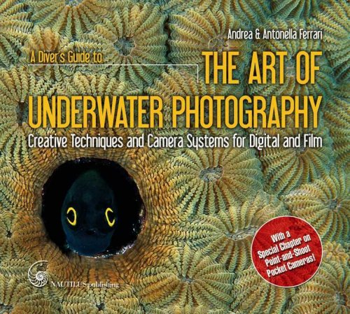 A Diver's Guide to the Art of Underwater Photography: Creative Techniques and Camera Systems for Digital and Film