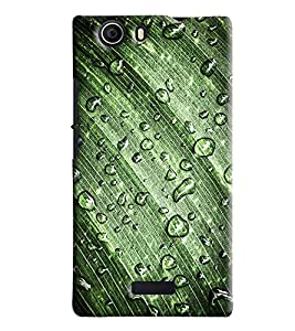 Blue Throat Waterdrop On Leaf Printed Designer Back Cover/ Case For Micromax Nitro 2 (E311)