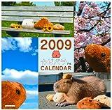 2009 カピバラさん 月めくりカレンダー 壁かけタイプ