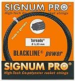 Signum Tennissaite Pro Tornado 12m