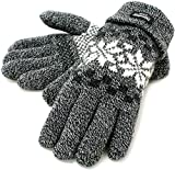 (シンサレート) Thinsulate 手袋 メンズ グローブ ニット 雪柄 ノルディック 高機能中綿素材 4color (Free, チャコール)