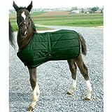 High Spirit Foal Blanket