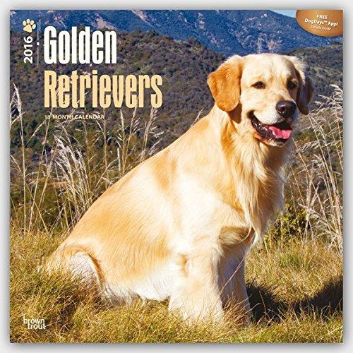 Golden Retrievers 2016 Wall