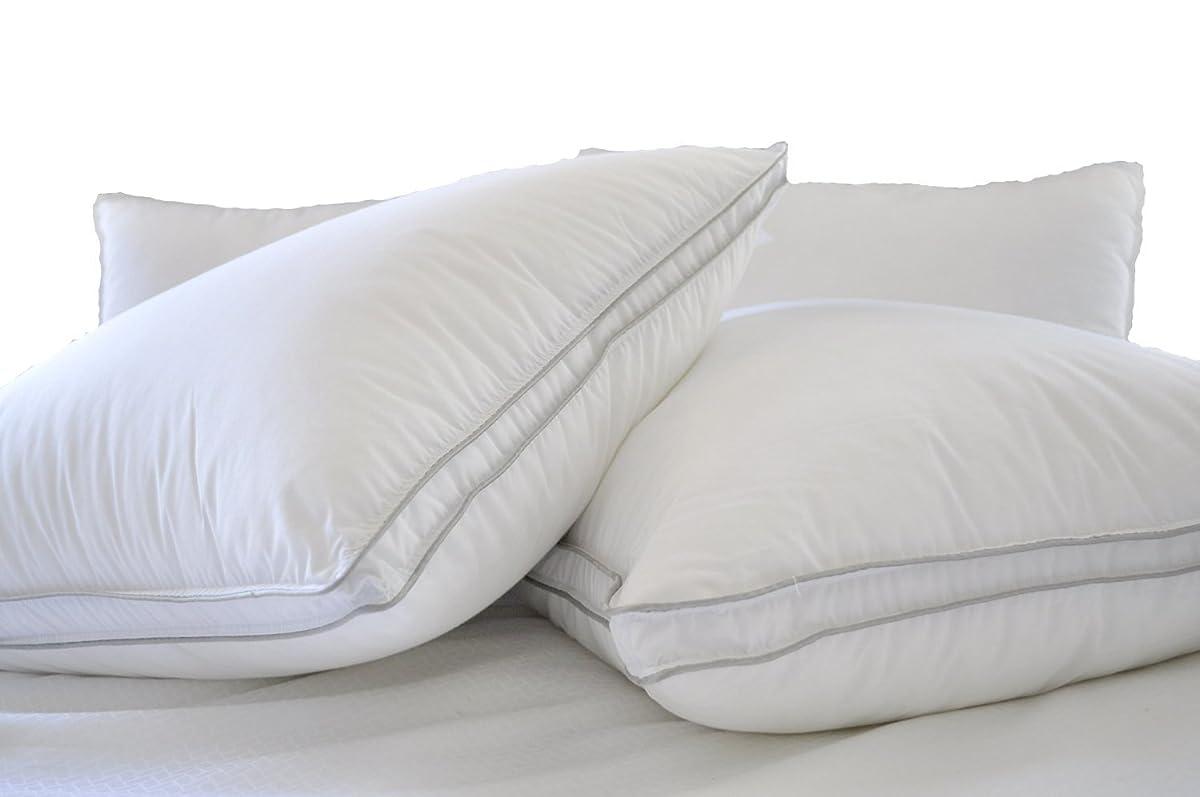 Natural Comfort ALLERGY SHIELDS Luxurious Down Alternative Pillows, King, 45 Oz fill, Set of 2