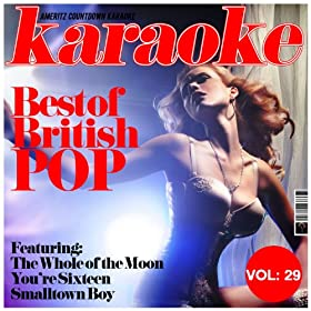 (When You're) Young & In Love (In the Style of Flying Pickets) [Karaoke Version]