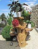 """Blumenständer aus Holz 60cm mit 4 Ablagen Kaffeebaum """"Top Design"""""""