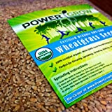 Certified Organic Non-GMO Wheatgrass Seeds - 5 Pounds - Guaranteed to Grow