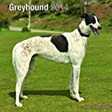 Avonside Publishing Greyhound 2014 (Calendar 2014)