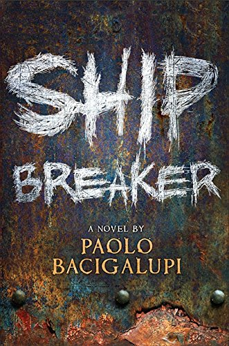 Image of Ship Breaker