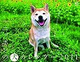 ニッポンの犬 カレンダー 2011