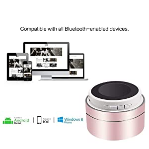 Bluetooth Speakers Portable Wireless, Ruoi Mini Stereo MP3 Player with Built-in Mic, FM Radio and SD/TF Card Play Music for iPhone Ipad Smartphone PC