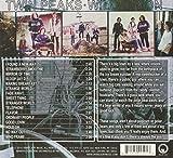 Twin Peaks - Wild Onion [Explicit]