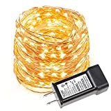 LE 33ft LED String Lights, 100 LEDs, Copper Wire, Flexible Fairy Lights, Warm White, Indoor and Outdoor Starry String Lights for Garden, Patio, Wedding,Tree, Party, Christmas, Thanksgiving, UL Listed