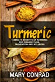 Turmeric: 15 Health Benefits of Turmeric for Disease Cure, Prevention and Wellness (Herbal Remedies, Anti-inflammatory, Anti-depressant, Improves Cardiac Health)