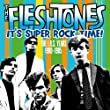 cover of Fleshtones – It's Super Rock Time