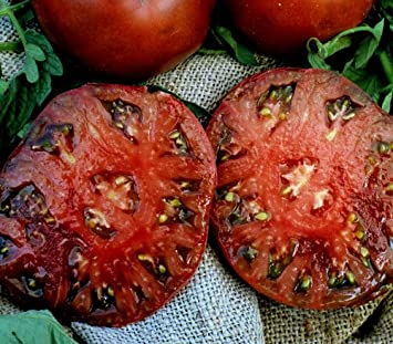 30+ Organic Seeds Beautiful /& Delicious 1-2lb Heirloom Fruits - Produces Rare Hillbilly Tomato Seeds Hillbilly Seeds by PowerGrow Systems