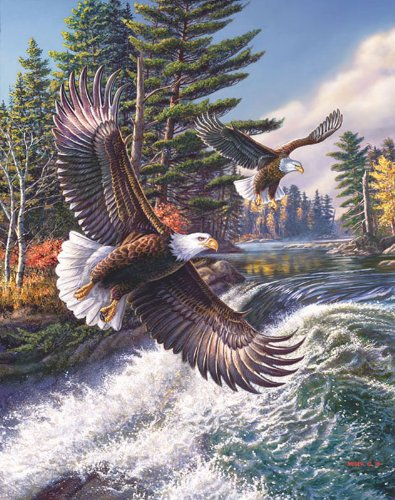 Whitewater Eagle a 500-Piece Jigsaw Puzzle by Sunsout Inc