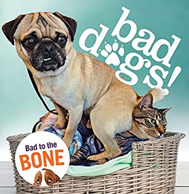 Bad Dogs (Humour)