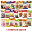 Bandz - Shaped Wrist Bands - (120 bandz styles may vary) [Toy]